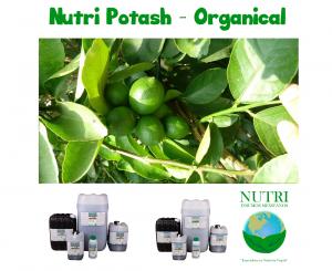 nutriorganical