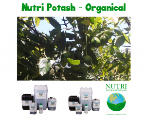 nutripoorganic